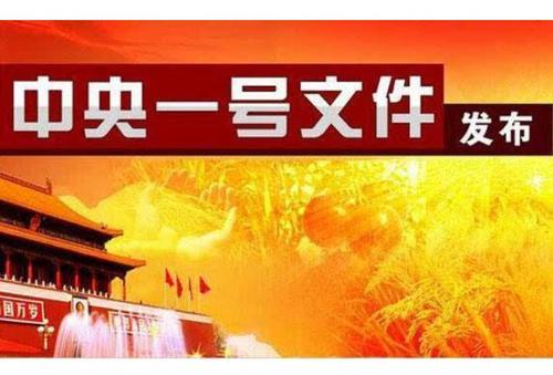 """中共中央 国务院 关于抓好""""三农""""领域重点工作 确保如期实现全面小康的意见"""