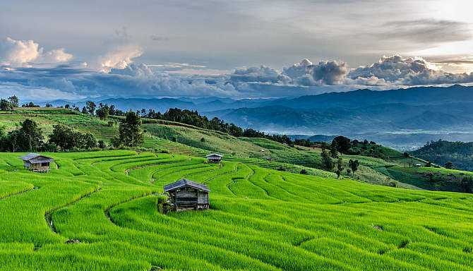 农业农村部 中央网络安全和信息化委员会办公室关于印发《数字农业农村发展规划(2019-2025年)》的通知
