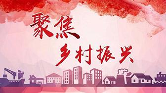 广东省省委实施乡村振兴战略领导小组关于印发 《关于推进现代农业高质量发展的指导意见》 的通知