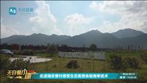 浙江电视台探访曹村艾米:科技赋能带动农民增收致富