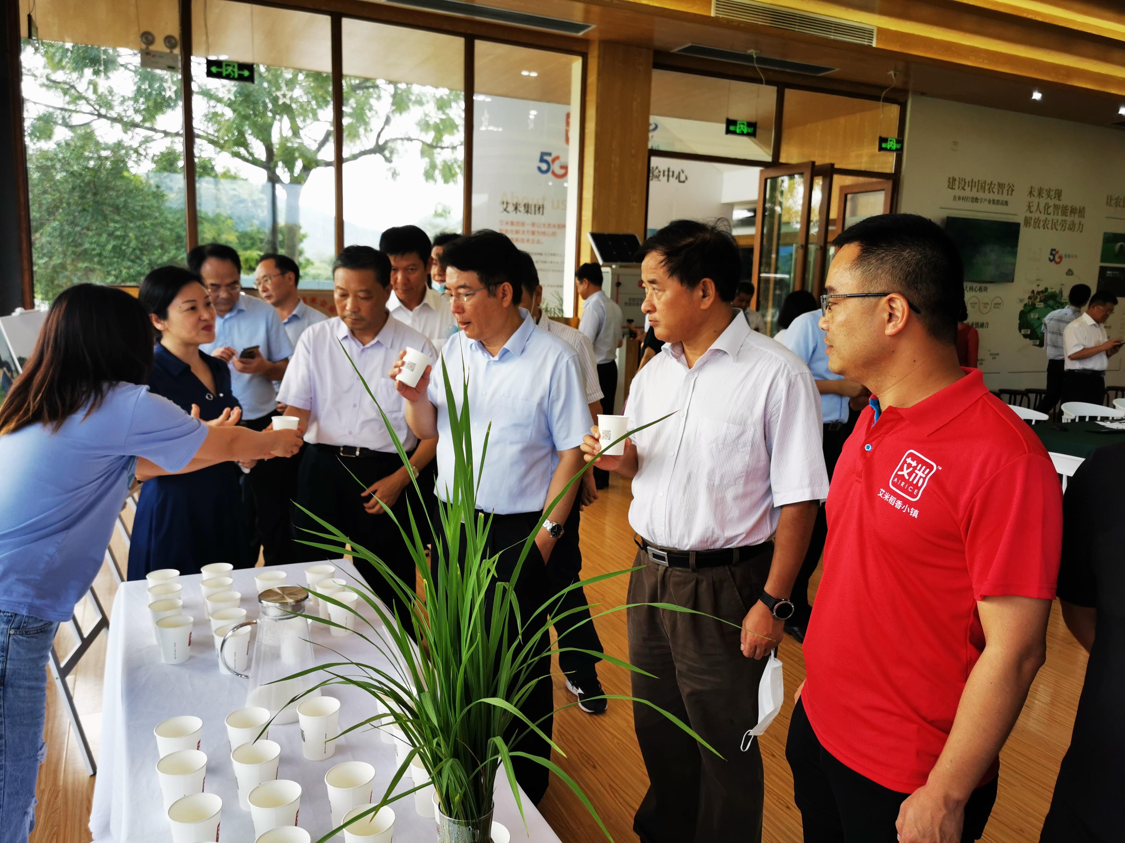 江西省副省长胡强带领考察团调研艾米稻香小镇