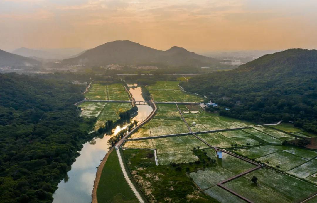 艾米稻香小镇入选2020广州市从化区首批研学旅行实践基地